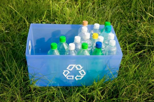 Bottle bank with bottles on lawn